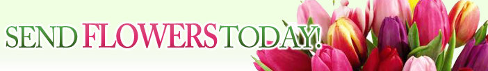 clearwaterflorist.com